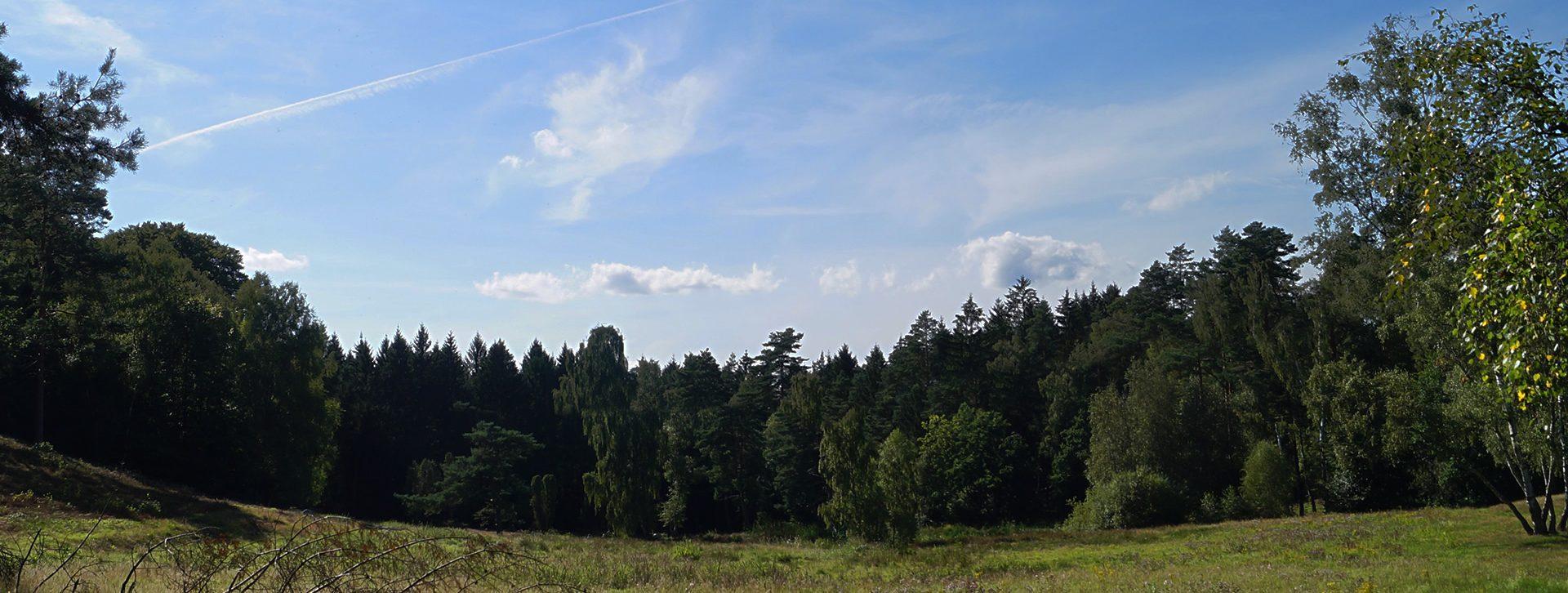 Woelke Garten- und Landschaftsbau GmbH